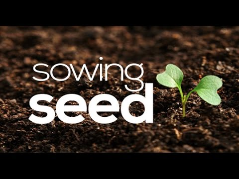 sowing a seed for marriage